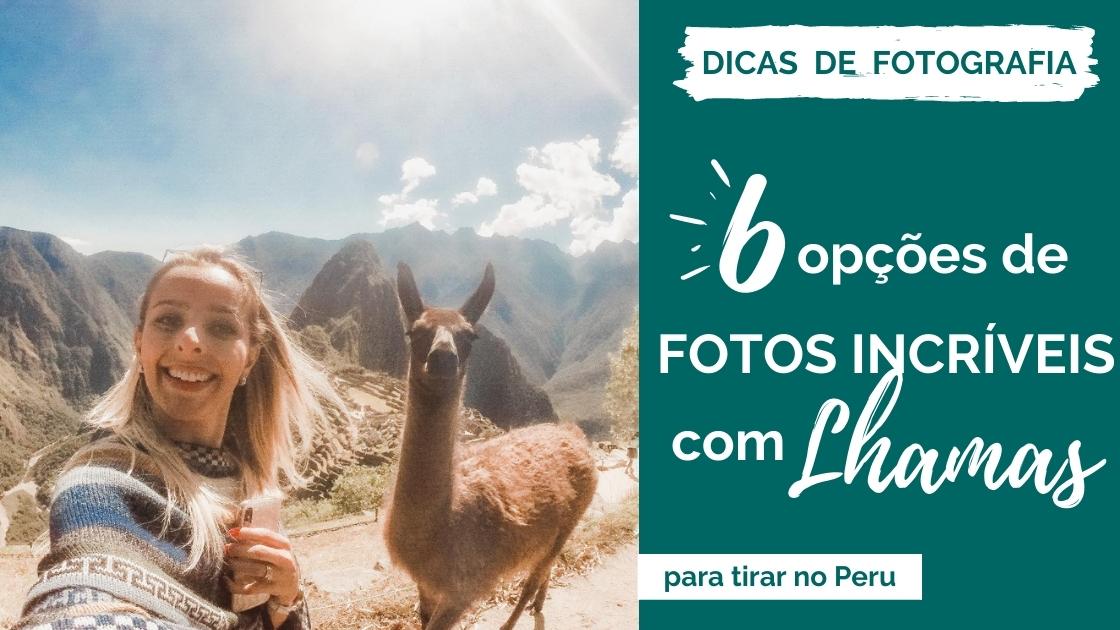6 fotos com lhamas